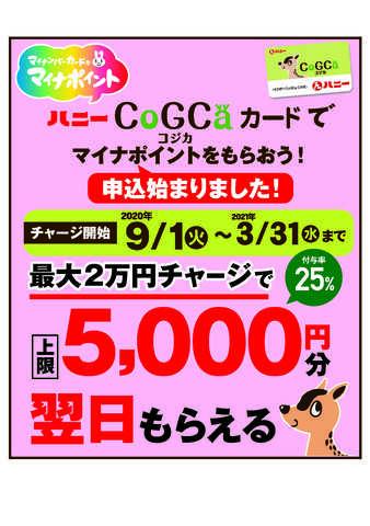コジカ カード マイナ ポイント 【ハニー】ハニーCoGCa(コジカ)カードでマイナポイントをもらおう!...